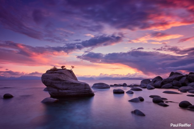 "Location : Lake Tahoe, USA <a href=""https://www.paulreiffer.com/buy-prints/bonsai/"">- Buy the limited edition print</a>"