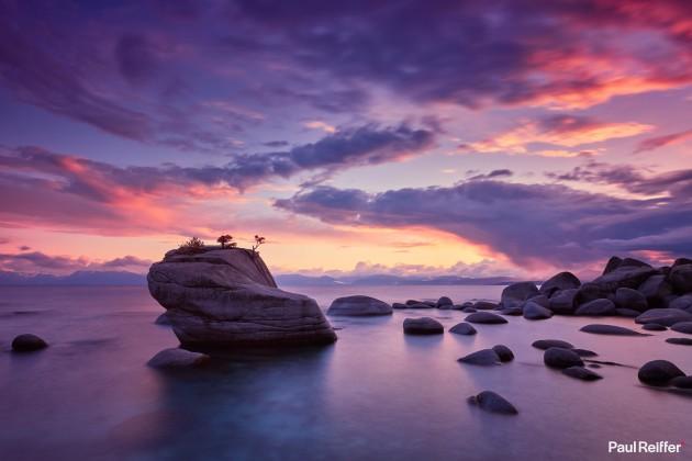 "Location : Lake Tahoe, USA <a href=""https://www.paulreiffer.com/buy-prints/bonsai/"">- Buy the limited edition print</a>"