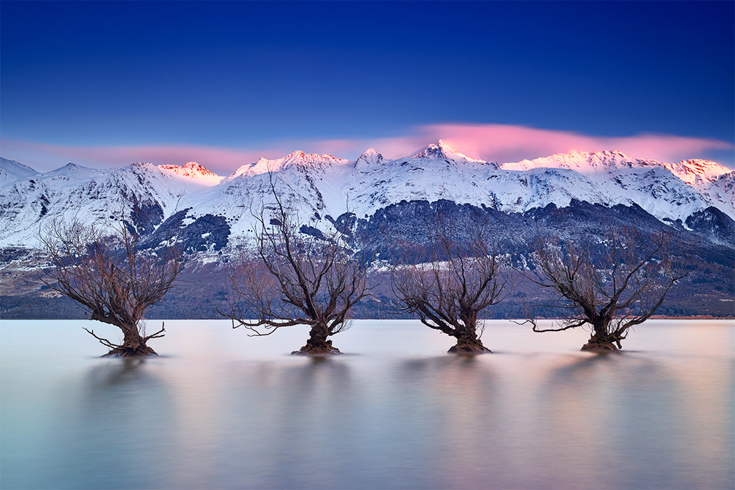 Glenorchy Willows Line Up Sunrise Remarkables Snow Mountains Lake Wakatipu Queenstown New Zealand Winter Paul Reiffer Professional Medium Format Landscape Photographer PureNewZealand