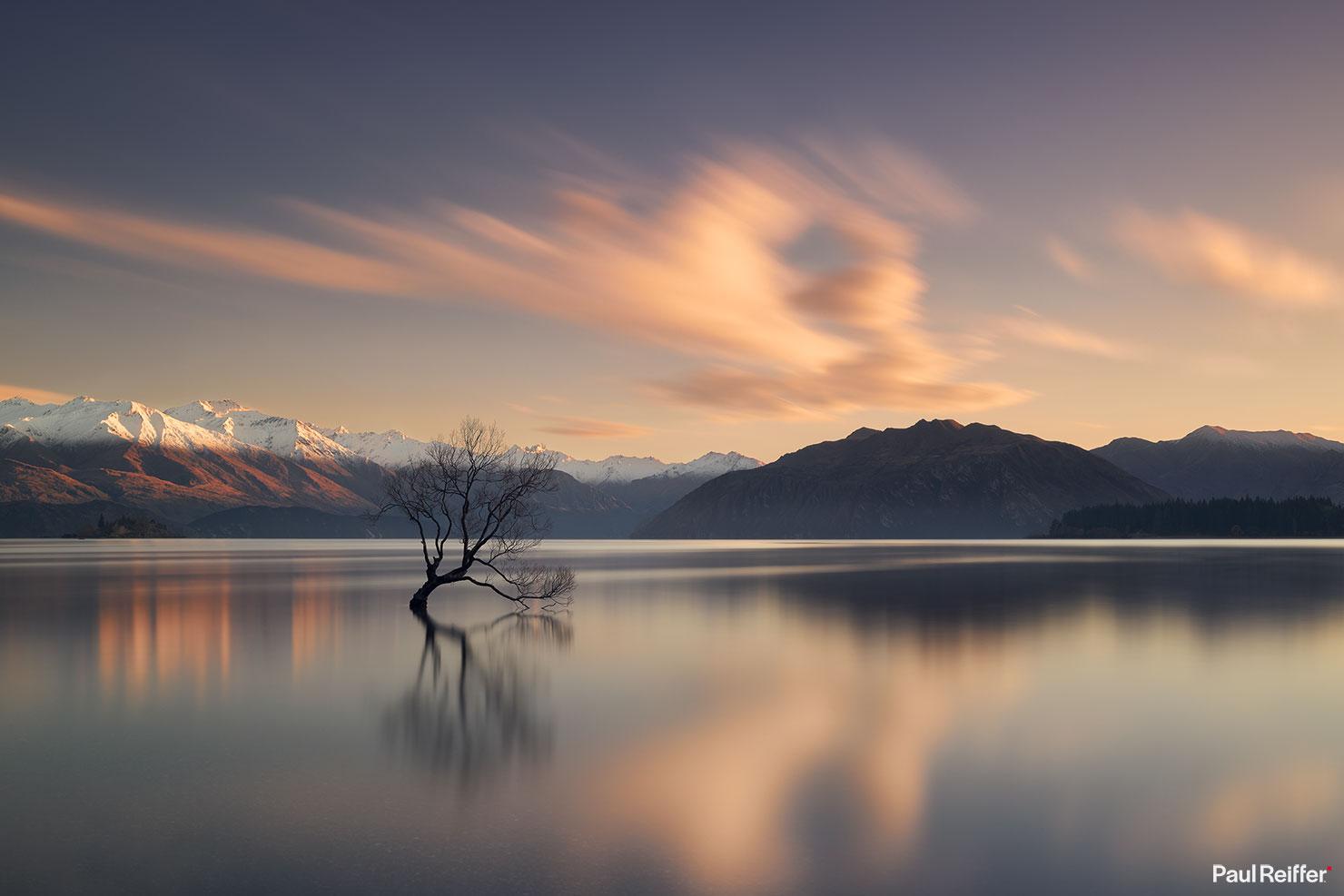 presence lake wanaka tree new zealand full wm paul reiffer fine art print